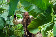 Pirates of the Carribean On Stranger Tides Pics