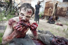 The Walking Dead Episode 201