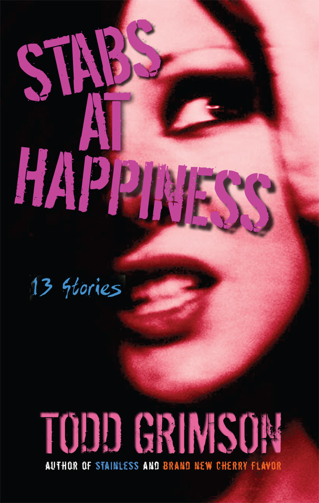 Stabs at Happiness 13 Stories by Todd Grimson