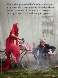 Martha Stewart Halloween Red Riding Hood and Wolf