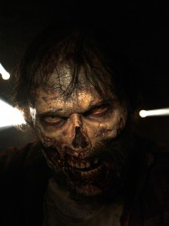 The Walking Dead Zombie Walker